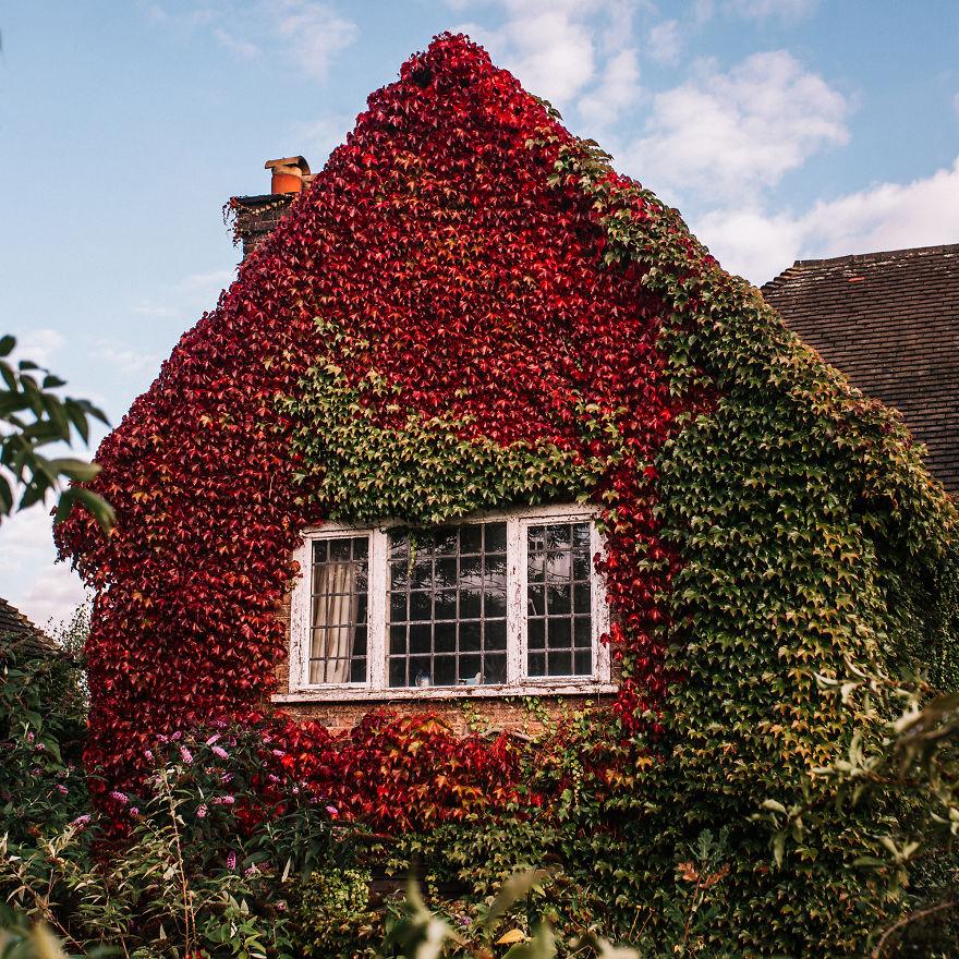 Khung cảnh thu lá vàng xuyến xao lòng người: Đâu phải ngẫu nhiên mà chúng ta yêu mùa thu đến vậy - Ảnh 19.