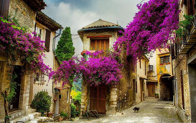 Ngất ngây đắm chìm trong những ngôi làng phủ đầy hoa tươi khắp thế giới - Ảnh 7.