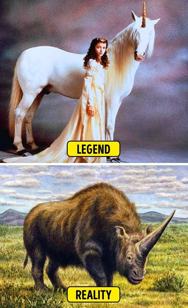 Sự thật về 9 câu chuyện thần thoại trong lịch sử mà ai cũng từng tin sái cả cổ - Ảnh 9.