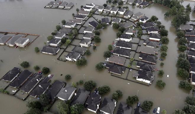 13 bức ảnh lột tả những thảm họa mà nhân loại phải gánh chịu trong năm 2017 - Ảnh 12.