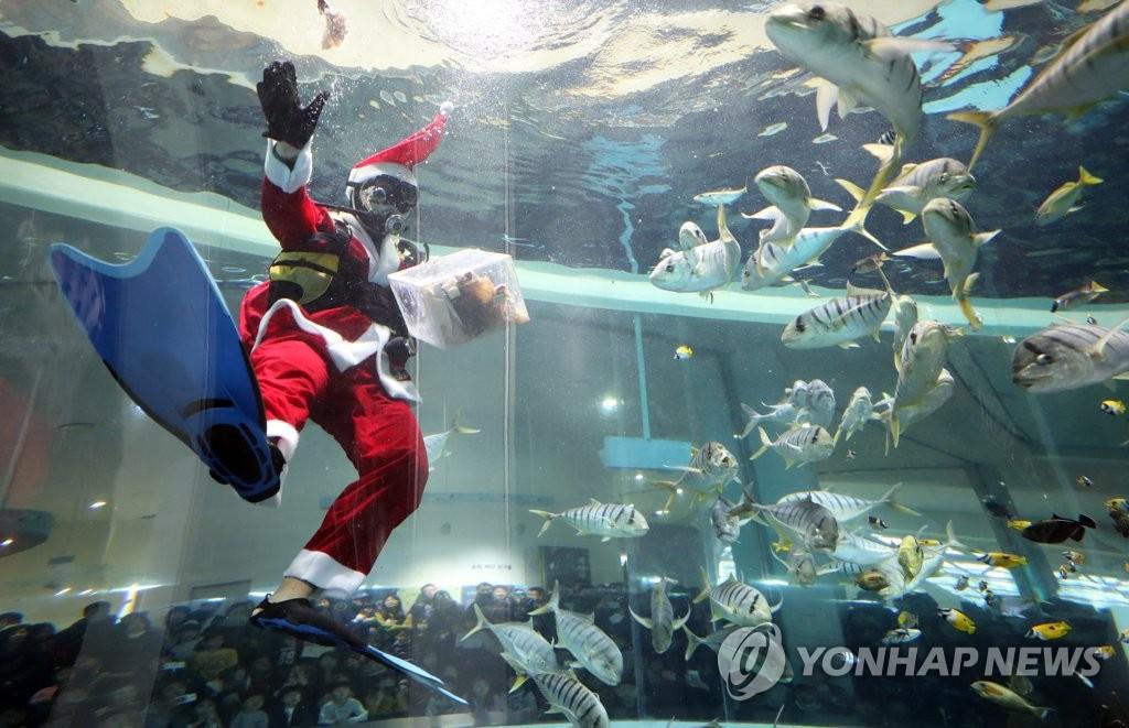Giáng sinh rực rỡ muôn sắc màu trên toàn thế giới: Hân hoan niềm vui và bao lời chúc nhau an lành! - Ảnh 20.