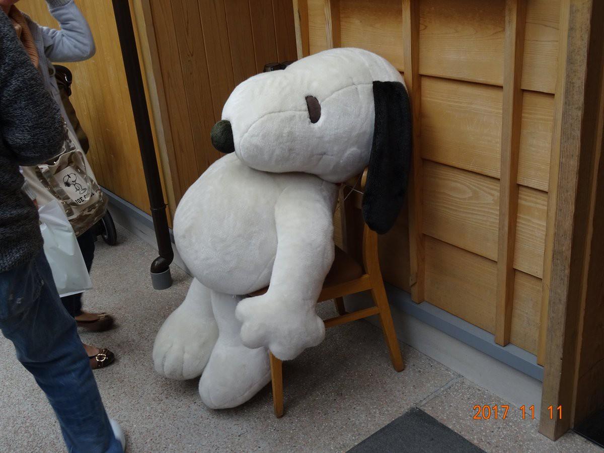 Thăm trà quán Snoopy mới được khai trương tại xứ hoa anh đào - Ảnh 25.