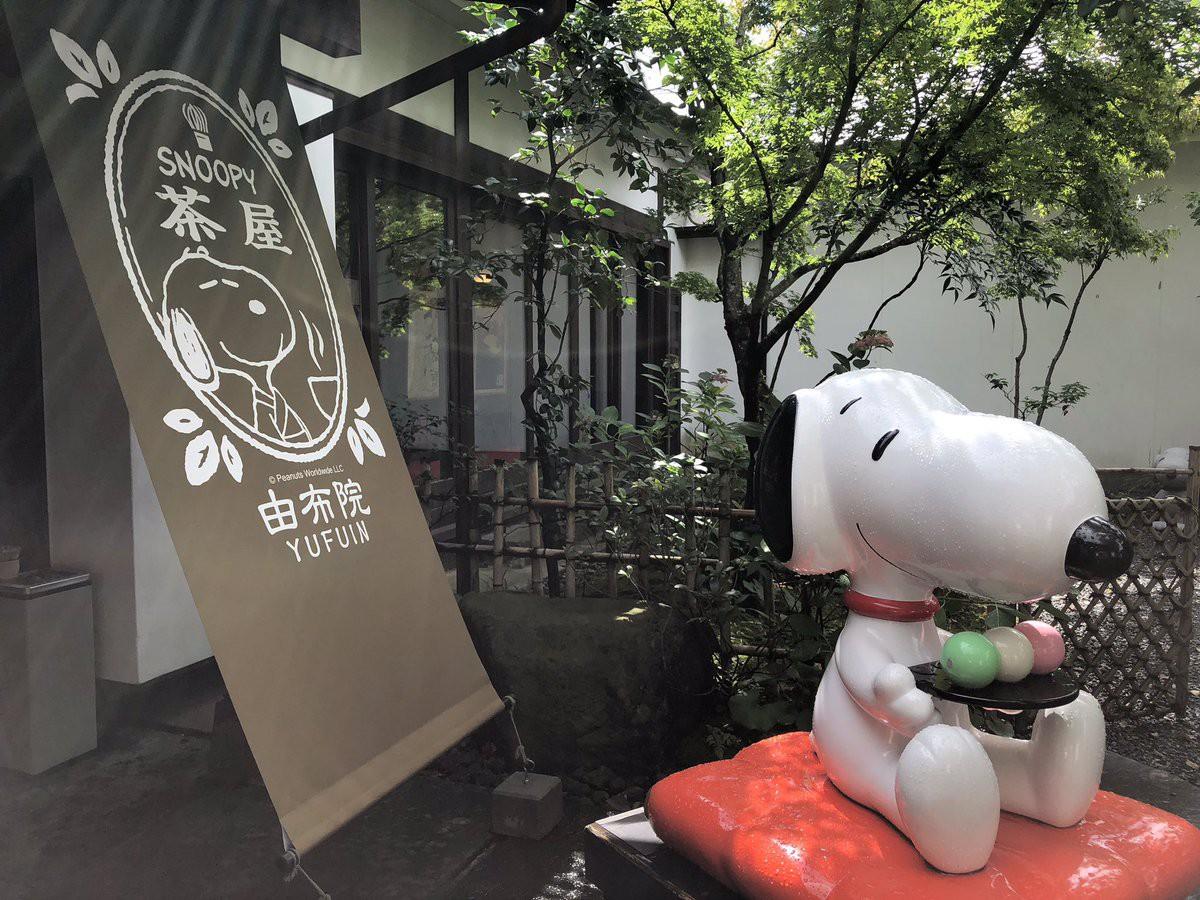Thăm trà quán Snoopy mới được khai trương tại xứ hoa anh đào - Ảnh 21.