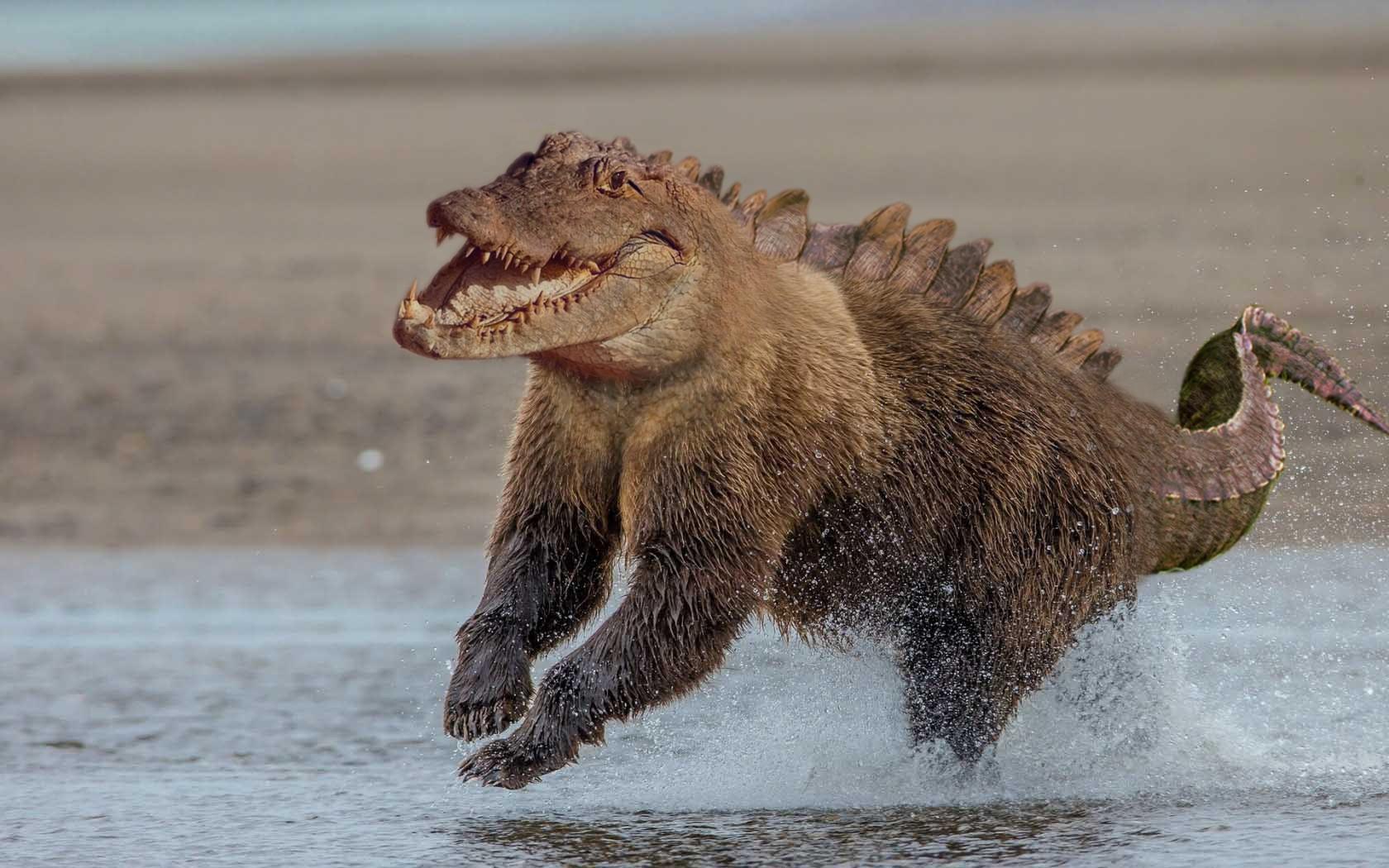 Những loài vật mới chỉ xuất hiện gần đây trong thời đại photoshop - Ảnh 29.