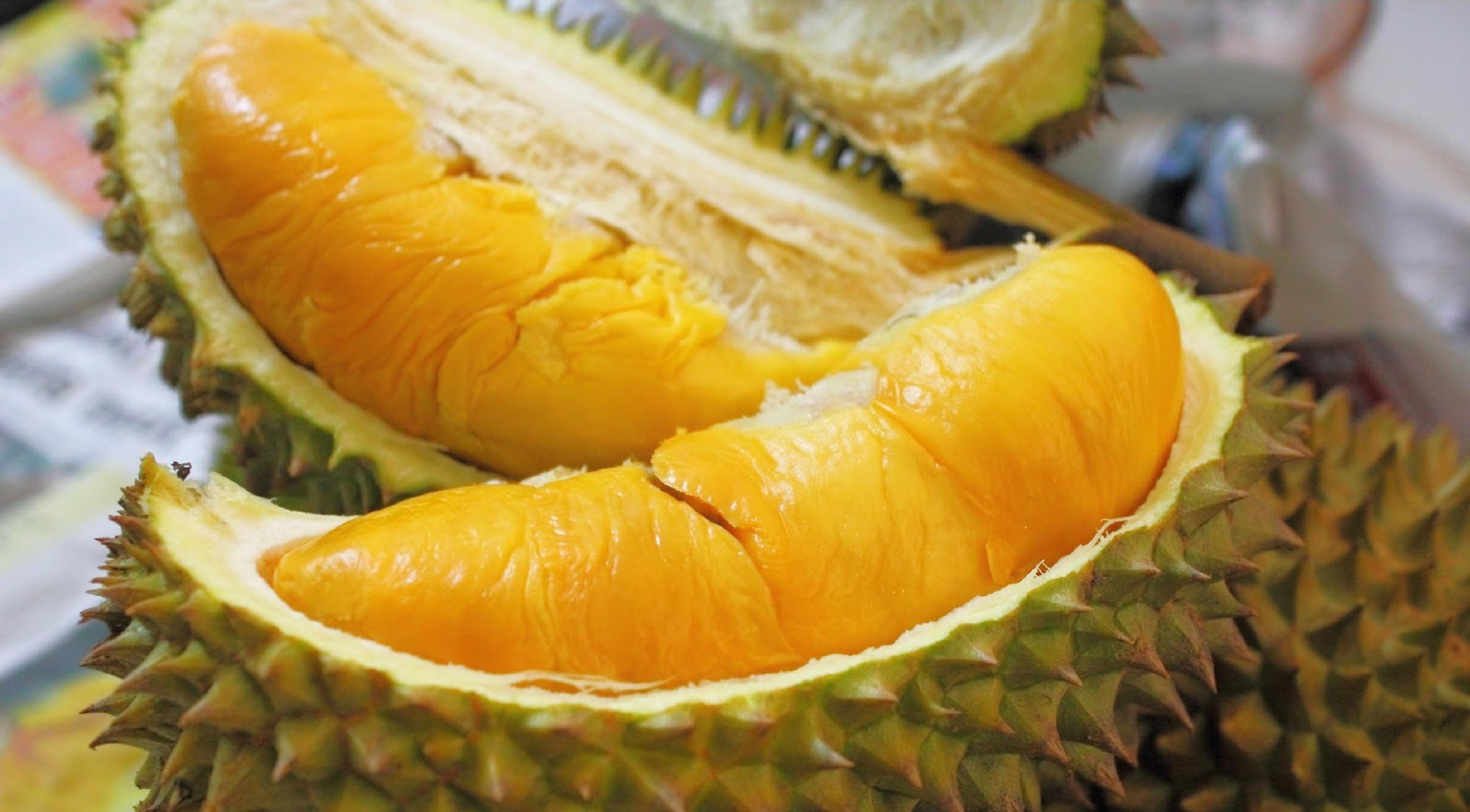 Image result for quả sầu riêng