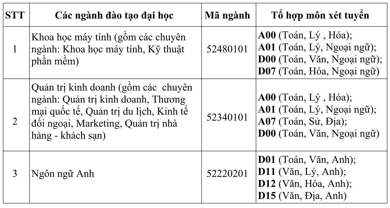 ĐH Quốc tế Sài Gòn công bố điểm xét tuyển nguyện vọng 1 - Ảnh 4.