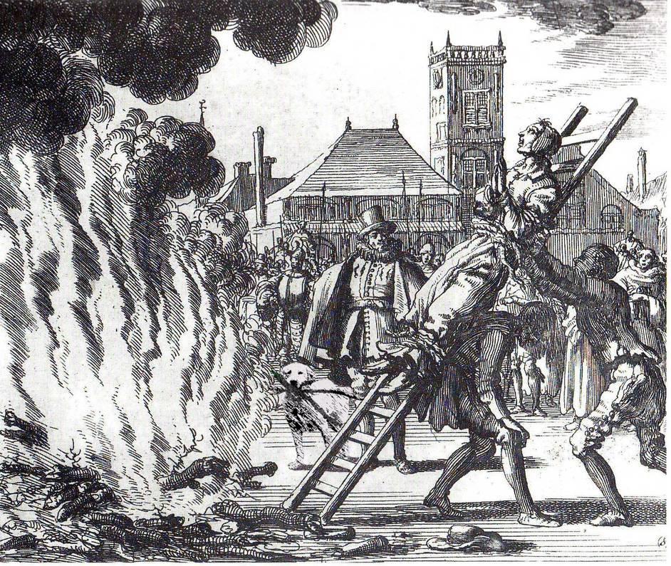 Chú chó ngáo ngơ trở thành nạn nhân của các thánh chế ảnh - Ảnh 24.