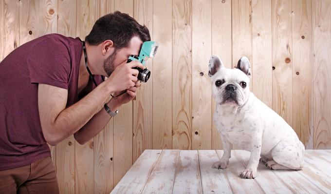 Hút cả trăm nghìn like trên mạng xã hội nhờ những bức ảnh siêu deep của thú cưng - Ảnh 1.
