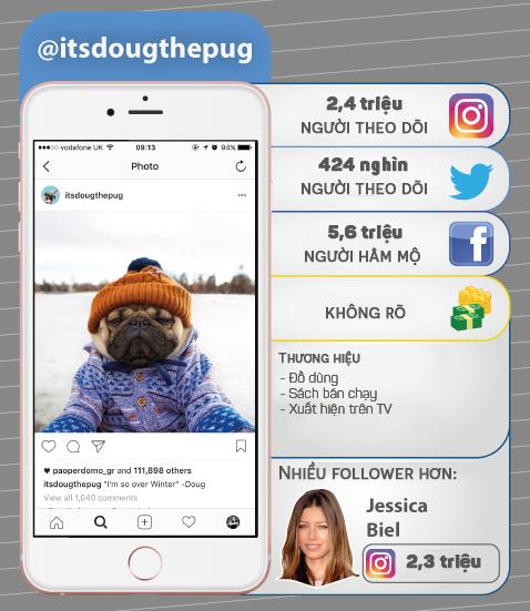 7 thú cưng cute lạc lối nổi đình đám trên Instagram nhất định bạn nên ghé thăm - Ảnh 3.