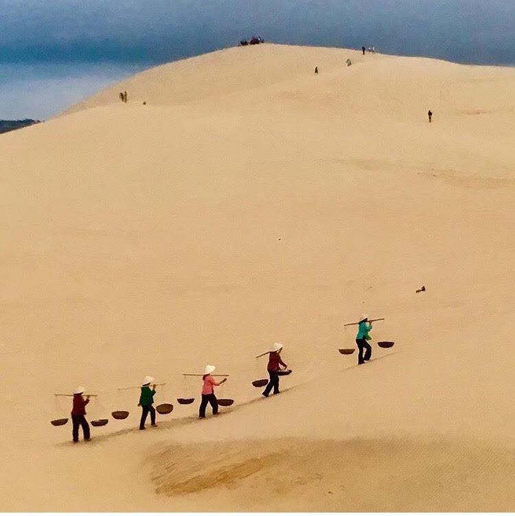 Ngẩn ngơ trước 5 đồi cát đẹp mê hồn ở miền Trung, nhìn thôi đã yêu luôn rồi - Ảnh 10.