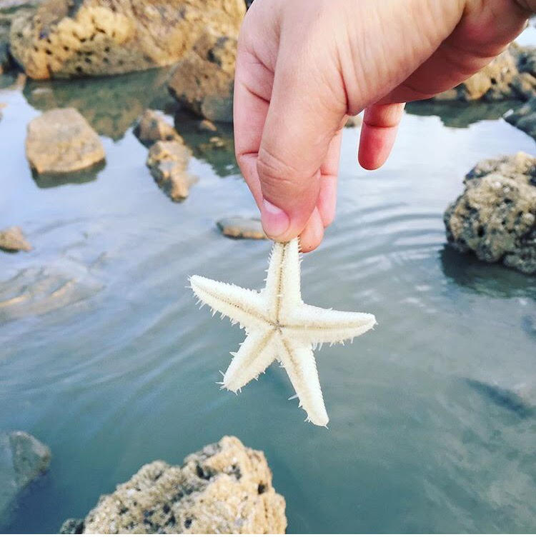 Những con đường giữa biển đẹp mê hồn ở Việt Nam mà bạn chưa biết tới - Ảnh 36.