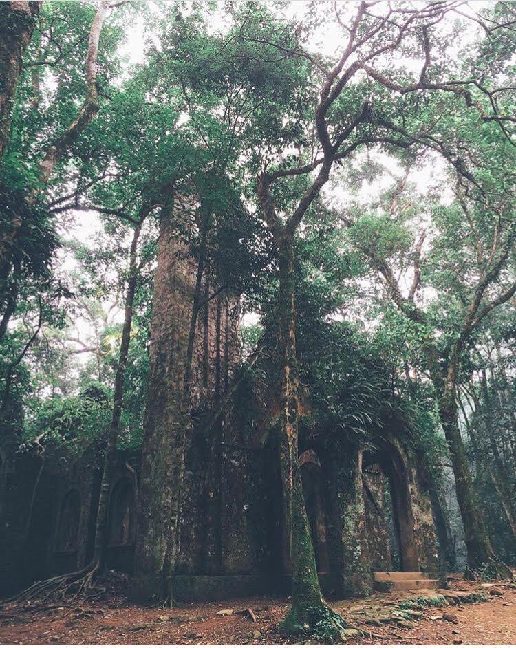 5 công trình bị bỏ hoang tại Việt Nam, muốn có những bức ảnh kì bí hết cả hồn thì nhất định phải đến! - Ảnh 44.
