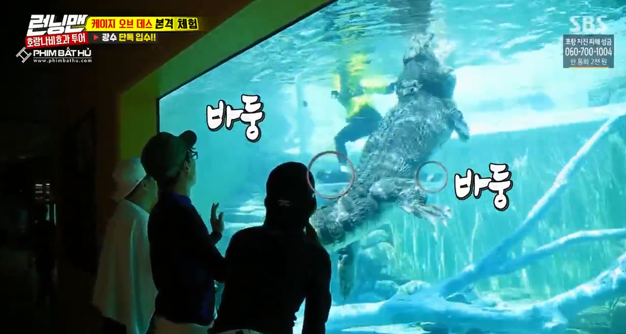 Sợ hãi tột độ, Lee Kwang Soo vẫn dành cho nàng cá sấu này 1 nụ hôn! - Ảnh 6.