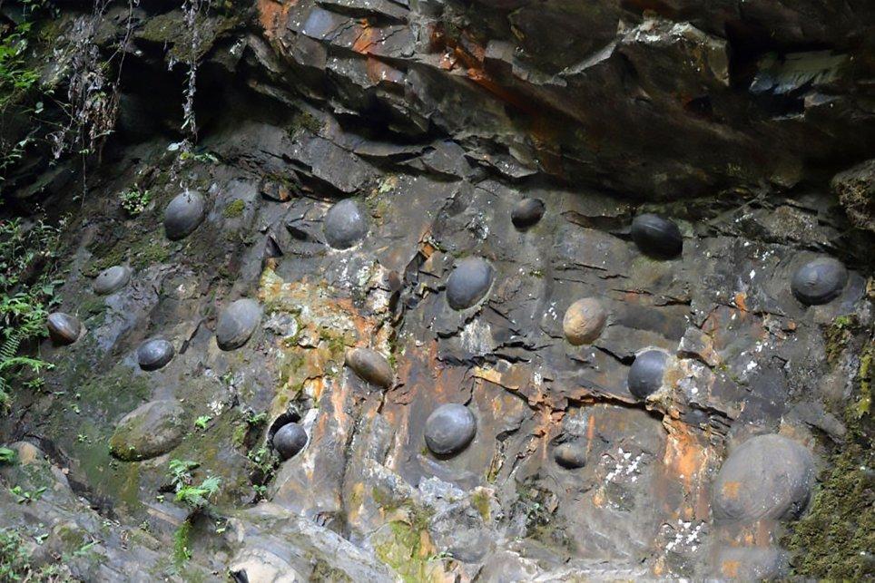 Vách đá bí ẩn cứ 30 năm lại đẻ trứng một lần - Ảnh 2.