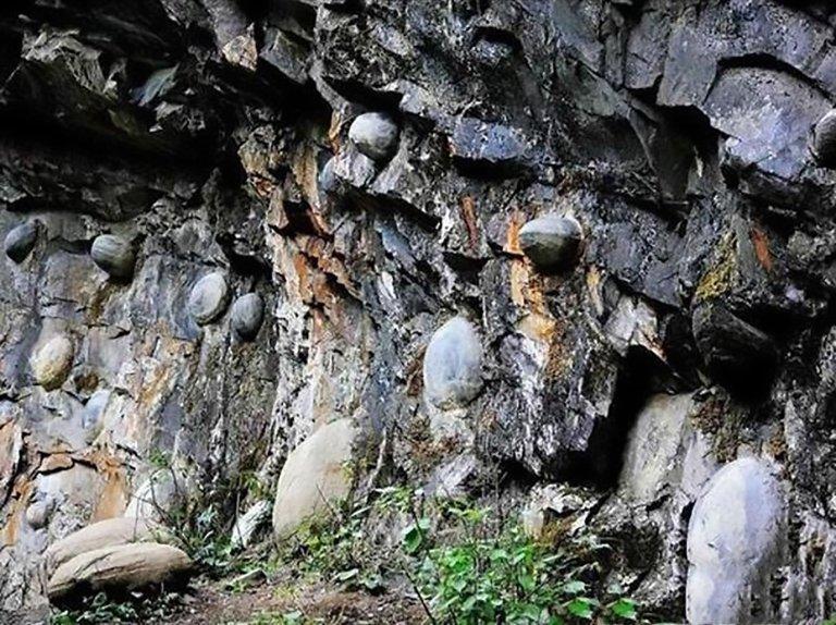 Vách đá bí ẩn cứ 30 năm lại đẻ trứng một lần - Ảnh 3.