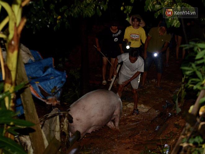 Chùm ảnh: Người dân sơ tán tài sản, vật nuôi trong đêm do nước tràn bờ tại Chương Mỹ, Hà Nội - Ảnh 13.