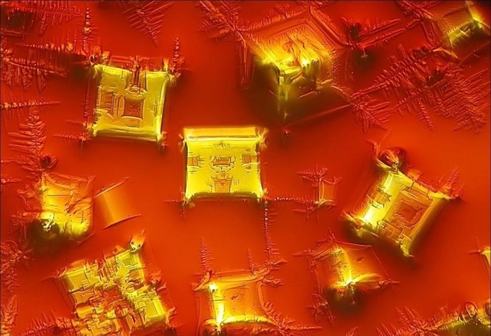 15 hình ảnh đồ vật được phóng đại qua kính hiển vi, hình số 9 khiến bạn phải bất ngờ - Ảnh 23.
