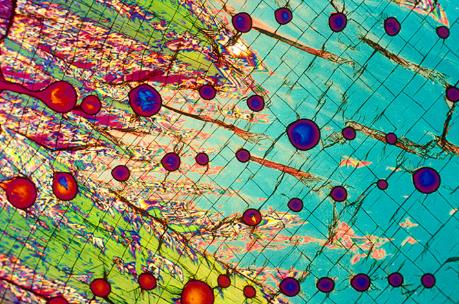15 hình ảnh đồ vật được phóng đại qua kính hiển vi, hình số 9 khiến bạn phải bất ngờ - Ảnh 25.
