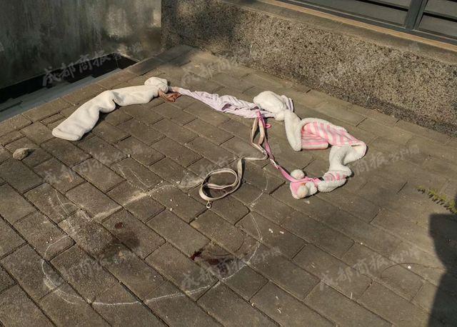Giữ chó người khác mà quyết không trả, người phụ nữ tàn ác còn đẩy chú chó từ tầng 6 xuống đất - Ảnh 7.
