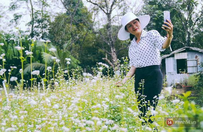Hoa tam giác mạch lần đầu xuất hiện tại Sài Gòn, người dân thích thú kéo đến chụp ảnh - Ảnh 13.
