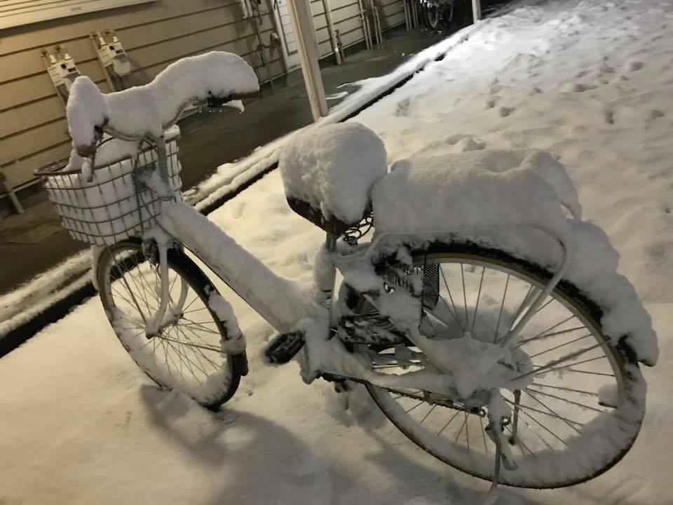 Hình ảnh đáng sợ về giá lạnh ở Nhật: Nước chảy đến đâu đóng băng đến đó - Ảnh 7.