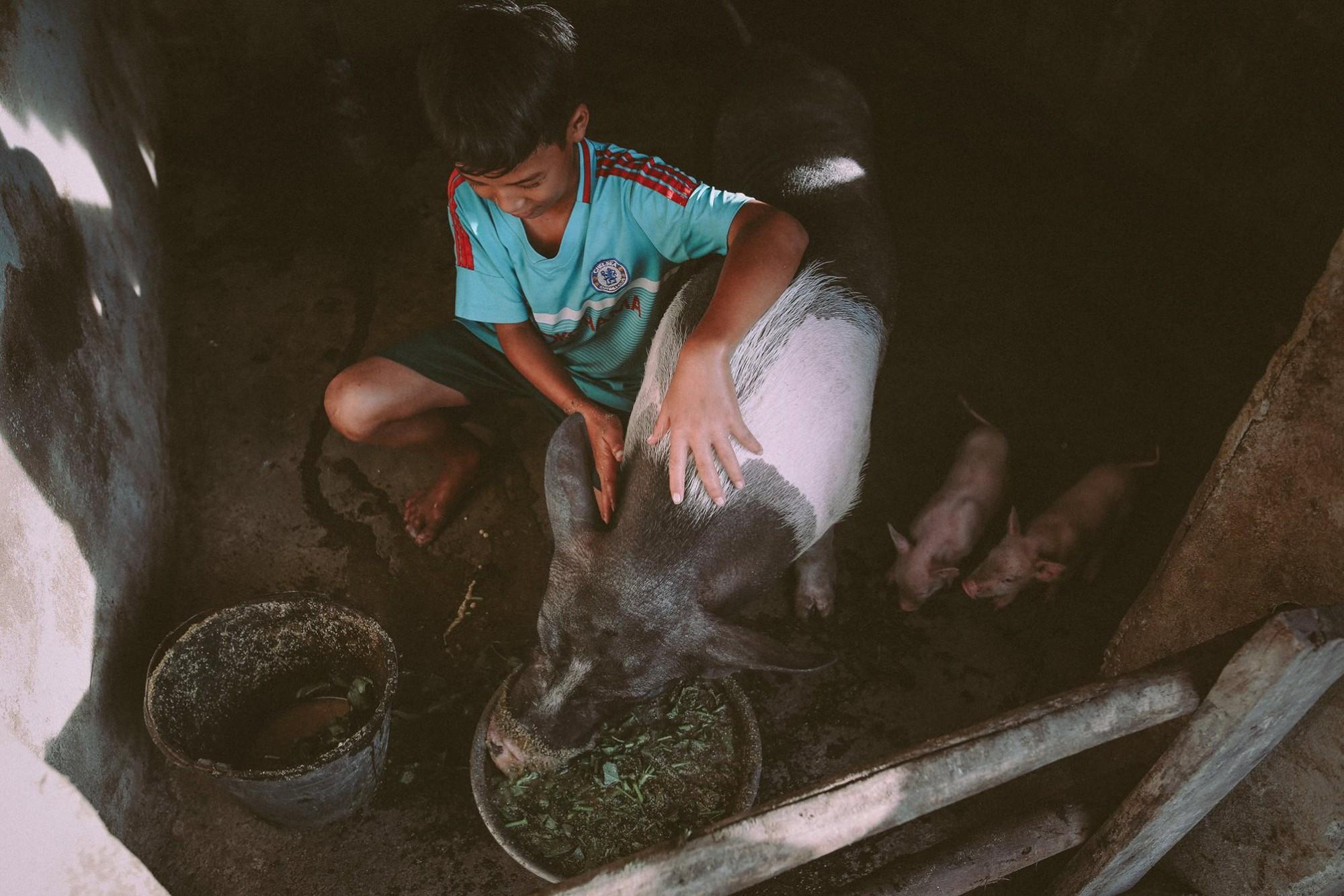 Bộ ảnh xúc động về cậu bé mồ côi ở Quảng Nam tự lập từ năm 12 tuổi, nuôi lợn để được đến trường - Ảnh 2.