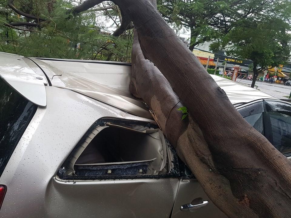 TP.HCM: Xế hộp bị cây xanh đè bẹp dúm trên đường phố, tài xế vội đạp cửa thoát ra ngoài - Ảnh 2.