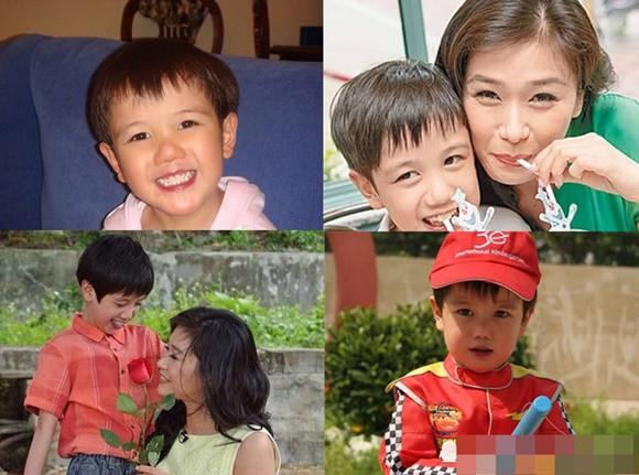 Phận đời Hoa hậu Trung Quốc Malaysia: Bị bạn trai bạo hành, từ chối 2 cuộc hôn nhân với đại gia vì lý do ít ai ngờ - Ảnh 12.