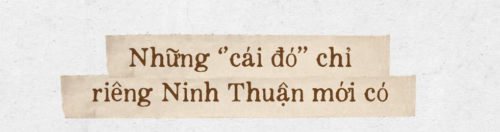 """Có một Ninh Thuận say đắm và """"đẹp quên lối về"""" mà bấy lâu nay bạn đã bỏ lỡ - Ảnh 16."""