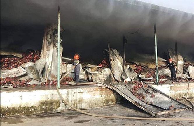 Kho chứa 260 tấn thanh long bốc cháy trong đêm - Ảnh 1.