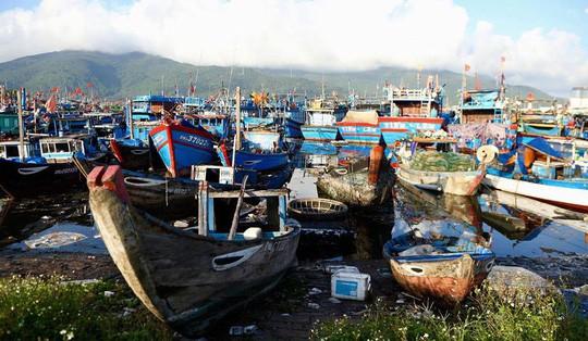 Bịt mũi vào cảng cá lớn nhất miền Trung nước đen ngòm, bốc mùi hôi thối - Ảnh 2.