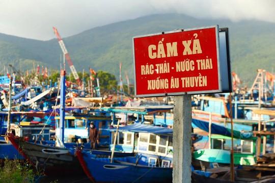 Bịt mũi vào cảng cá lớn nhất miền Trung nước đen ngòm, bốc mùi hôi thối - Ảnh 4.