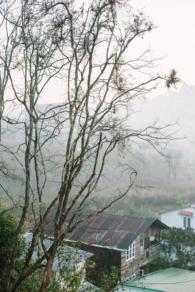 3 homestay đẹp miễn chê từ trong ra ngoài, luôn cháy phòng ở Đà Lạt - Ảnh 23.