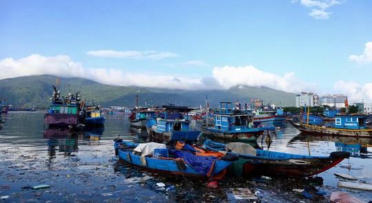 Bịt mũi vào cảng cá lớn nhất miền Trung nước đen ngòm, bốc mùi hôi thối - Ảnh 10.