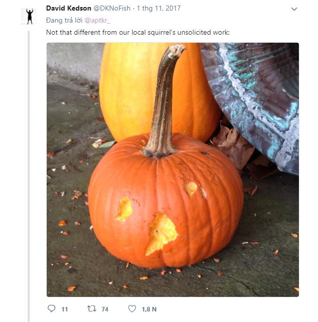 Cô gái đăng đàn khoe quả bí ngô giật giải Gương mặt thân thiện mùa Halloween, dân mạng xem xong ai cũng phát cuồng vì đáng yêu quá - Ảnh 6.