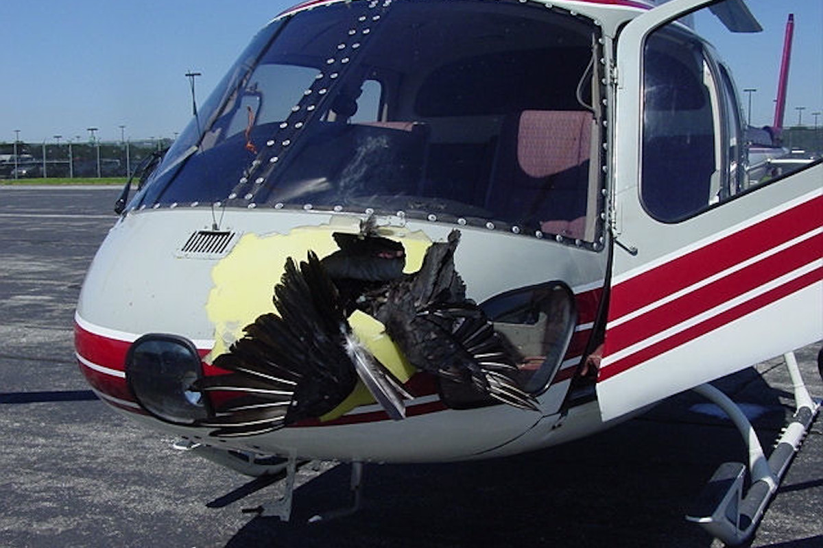 Video này sẽ chứng minh một chiếc drone bé tí hon lại có tiềm năng gây ra một thảm họa cực lớn - Ảnh 4.