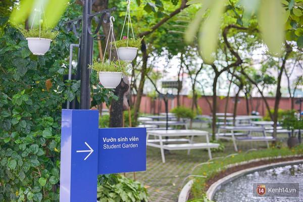 Bắc có ĐH Thăng Long, Nam có ĐH RMIT, đây chắc chắn là 2 ngôi trường đẹp, xịn nhất Việt Nam - Ảnh 7.
