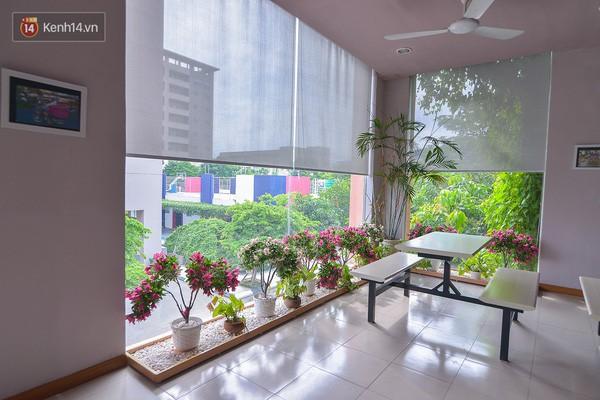 Bắc có ĐH Thăng Long, Nam có ĐH RMIT, đây chắc chắn là 2 ngôi trường đẹp, xịn nhất Việt Nam - Ảnh 4.