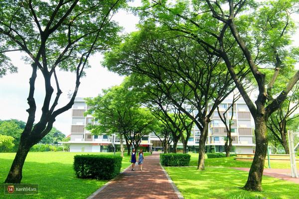 Bắc có ĐH Thăng Long, Nam có ĐH RMIT, đây chắc chắn là 2 ngôi trường đẹp, xịn nhất Việt Nam - Ảnh 16.