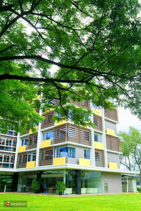 Bắc có ĐH Thăng Long, Nam có ĐH RMIT, đây chắc chắn là 2 ngôi trường đẹp, xịn nhất Việt Nam - Ảnh 19.