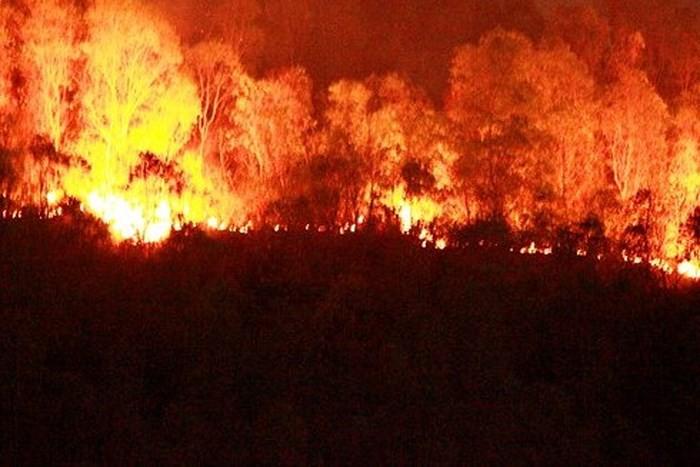 Những vụ cháy lớn kinh hoàng chỉ vì thói quen bất cẩn khi đốt vàng mã - Ảnh 2.
