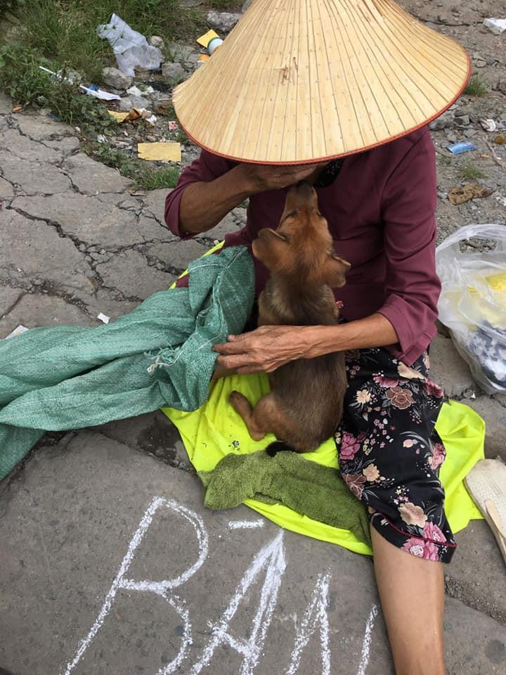 Cụ bà nhiều tuổi mắc bệnh nên phải bán chó con, cho người khác nuôi chó mẹ vì không nuôi nổi - Ảnh 3.