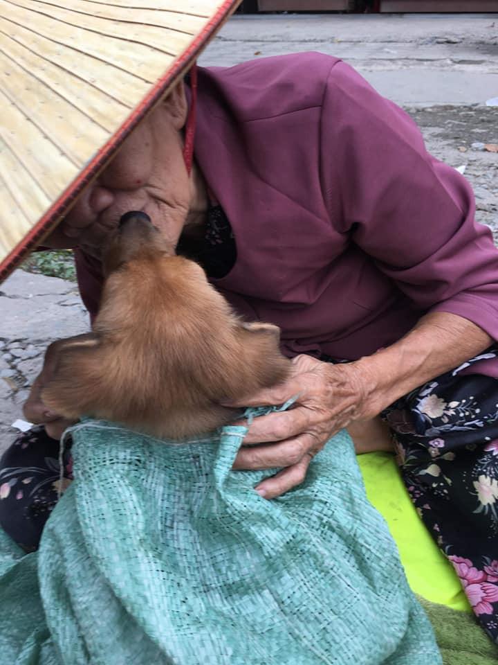 Cụ bà nhiều tuổi mắc bệnh nên phải bán chó con, cho người khác nuôi chó mẹ vì không nuôi nổi - Ảnh 4.
