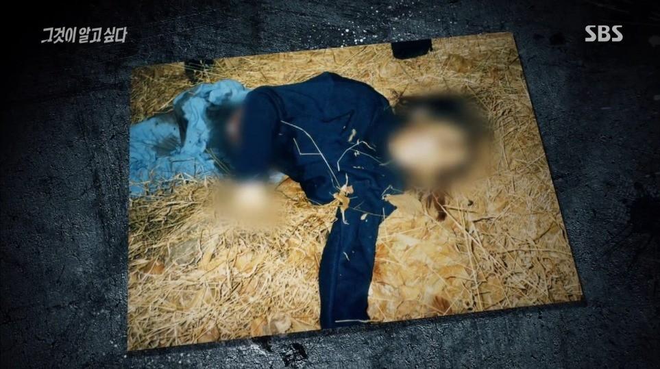 Thi thể nữ sinh trên sườn núi Busan mở ra vụ giết người với hàng loạt chi tiết đáng ngờ nhưng 17 năm qua vẫn chưa tìm được lời giải đáp - Ảnh 2.