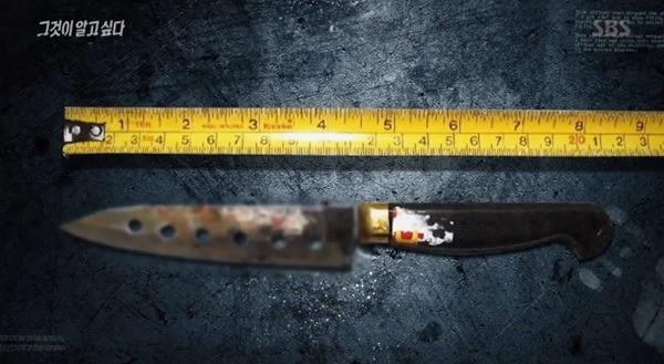 Thi thể nữ sinh trên sườn núi Busan mở ra vụ giết người với hàng loạt chi tiết đáng ngờ nhưng 17 năm qua vẫn chưa tìm được lời giải đáp - Ảnh 3.