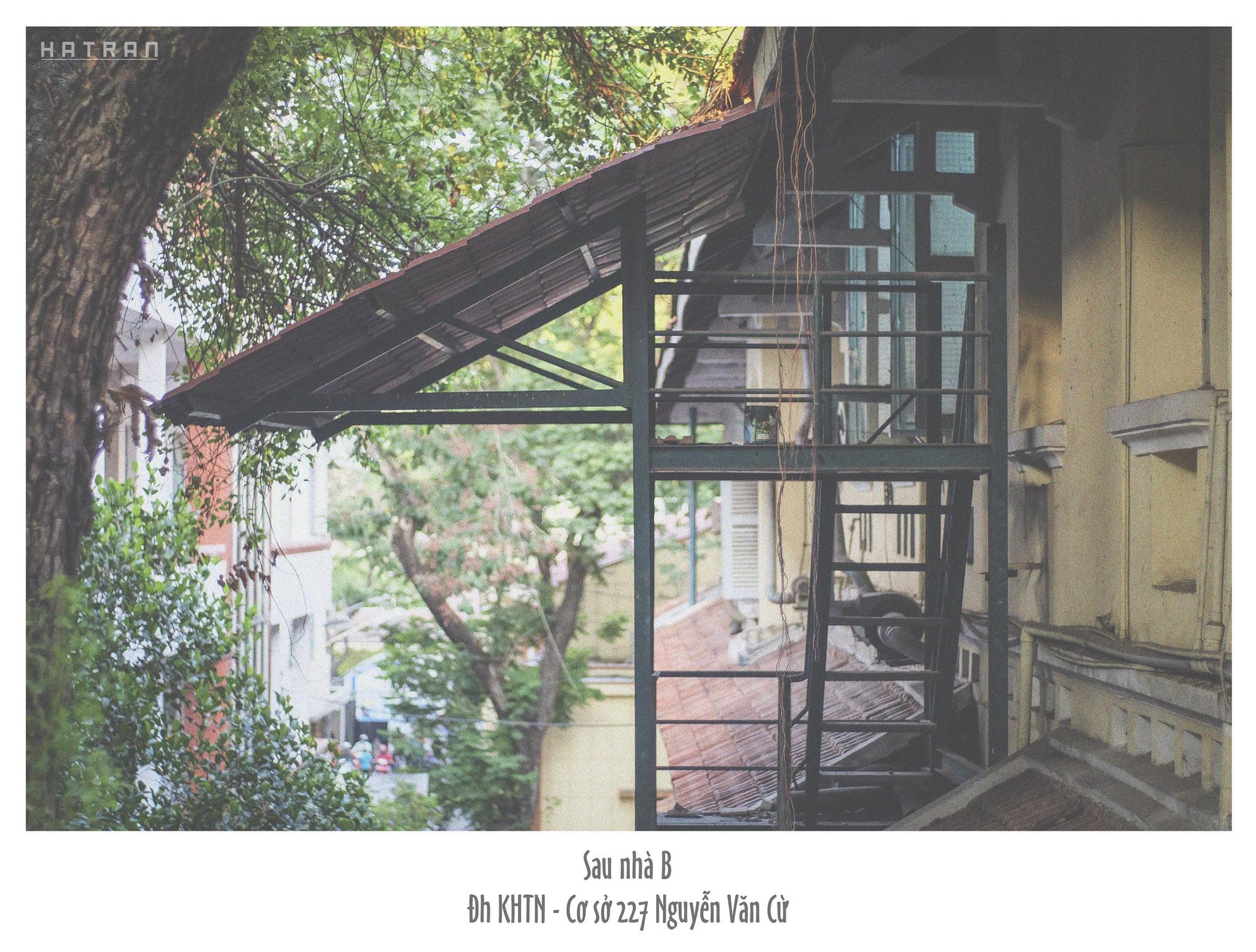 Trường Đại học dễ thương, lãng mạn nhất Sài Gòn, nơi có ghế đá FA dành cho người cô đơn nổi đình nổi đám một thời - Ảnh 13.