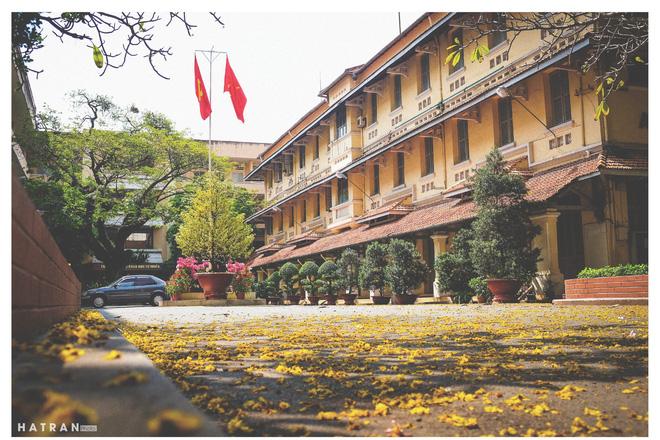 Trường Đại học dễ thương, lãng mạn nhất Sài Gòn, nơi có ghế đá FA dành cho người cô đơn nổi đình nổi đám một thời - Ảnh 2.