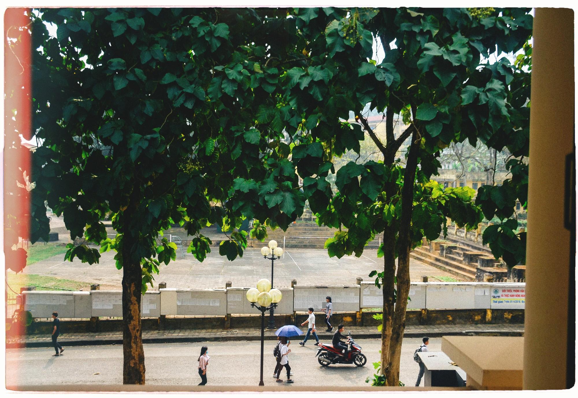 Đây là Đại học duy nhất ở Việt Nam có 1 khu rừng tuyệt đẹp ngay trong khuôn viên trường, tha hồ sống ảo - Ảnh 9.