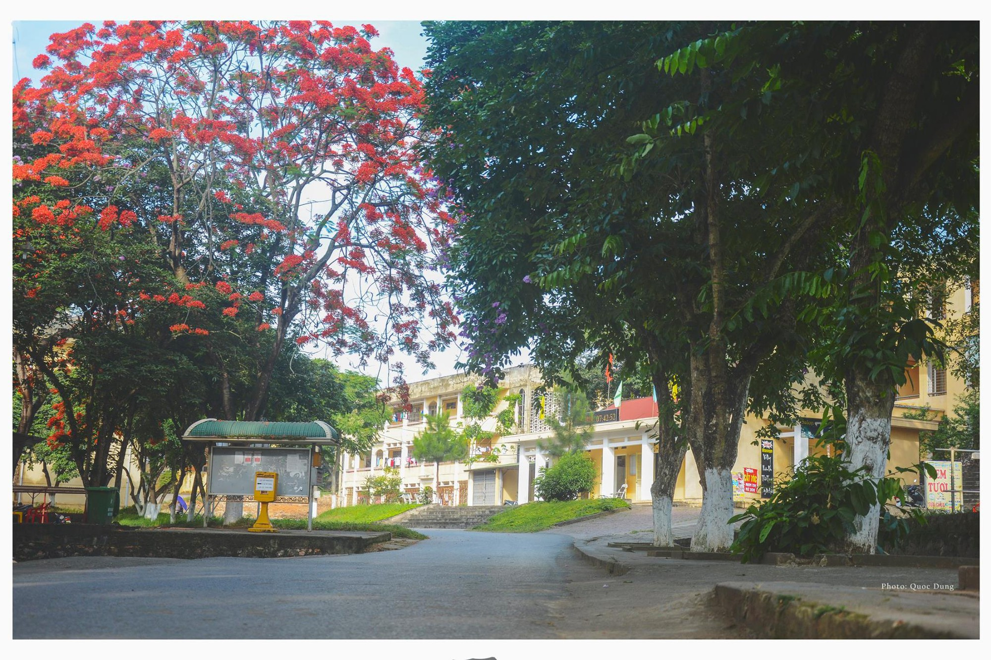 Đây là Đại học duy nhất ở Việt Nam có 1 khu rừng tuyệt đẹp ngay trong khuôn viên trường, tha hồ sống ảo - Ảnh 10.