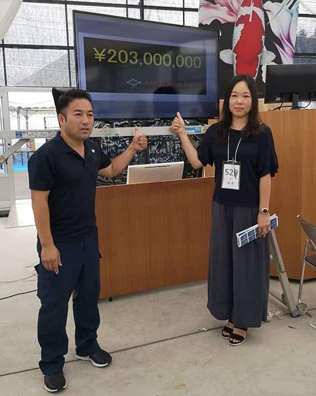Đây là nữ hoàng cá Koi đắt nhất thế giới với giá gần 42 tỷ đồng - Ảnh 3.
